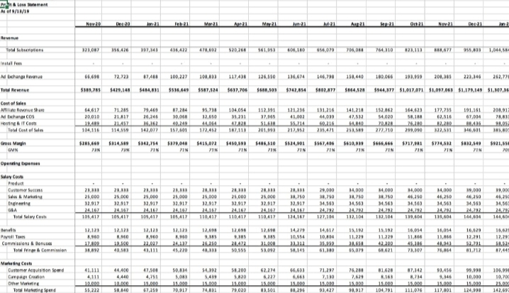 Output of financial model in the form of P&L statement