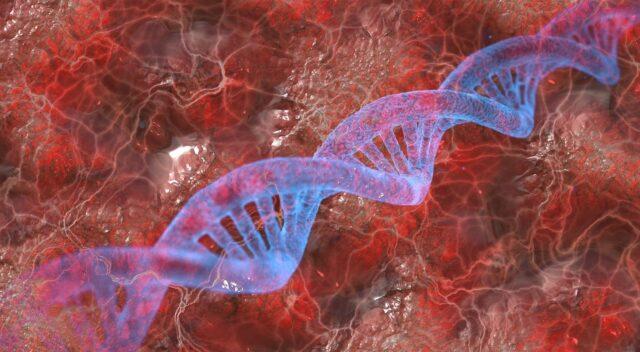 Q32 Bio secures US$ 60M in Series B funding
