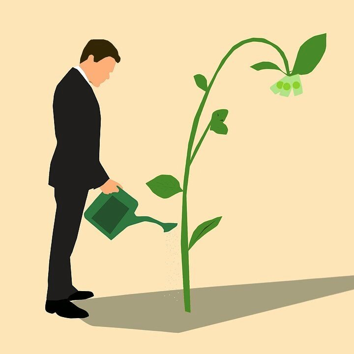 Image of man watering plant, depicting venture capital investments