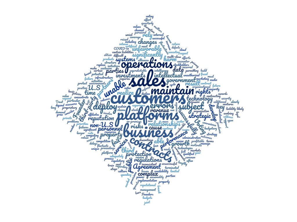 Word cloud of Palantir's risk factor summary