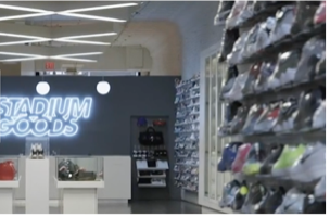 Helping shop footwear online